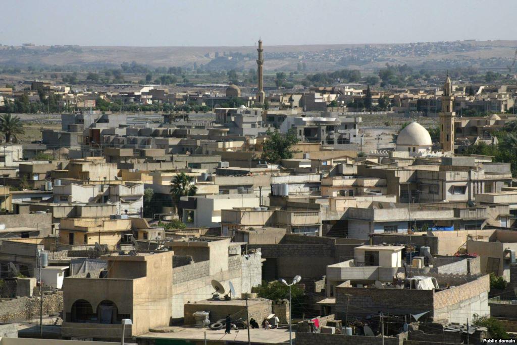 داعش يتخلص من محصول الحنطة وانخفاض أسعاره في الموصل