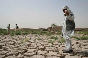خطة جديدة لاستصلاح الاراضي الزراعية في المناطق المحررة