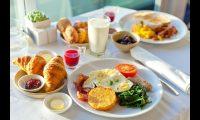 الأغذية عالية الدهون تسمم عقل الجنين